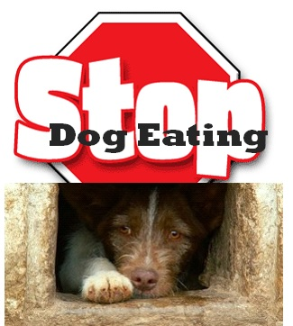 Stop Dog Eating